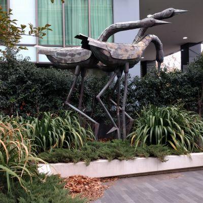 Birds - 350 St Kilda Rd